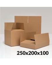 Karton klapowy 250x200x100 mm 1 szt.